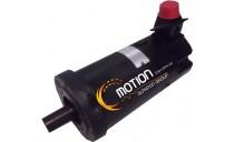 MOTEUR INLAND TT4204++40611-010-A