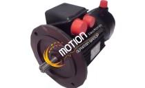 MOTEUR LEROY SOMER SMV 100L CS30 B5 BK18